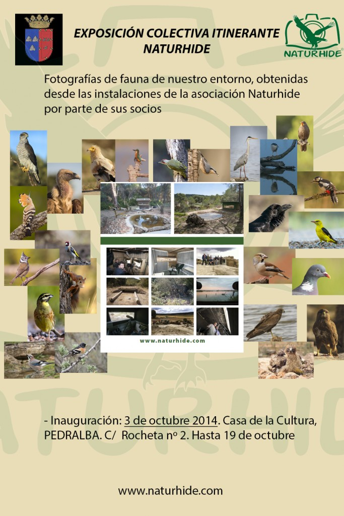 Anuncio Exposición itinerante Naturhide