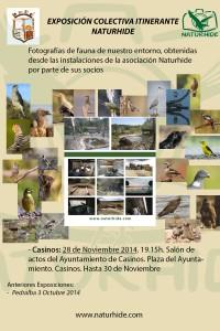 Cartel Exposición itinerante Naturhide Pedralba