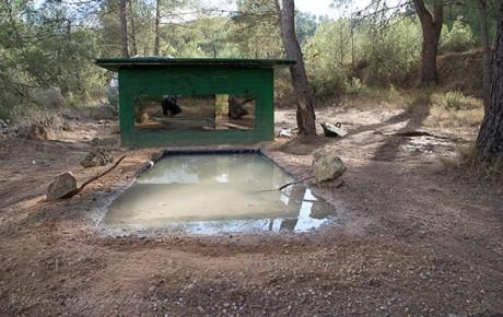 Hide de Segorbe (Castellón)