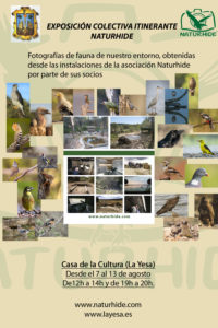 Cartel Exposición en La Yesa