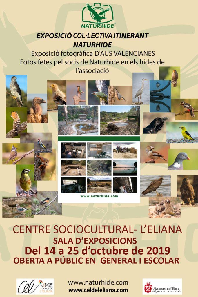 Cartel Exposición Naturhide L' Eliana